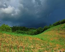 storm ws