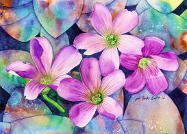wildfloweraws